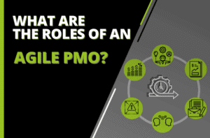 What are The Roles of an Agile PMO?